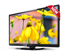 32 Direct LED  HD Digital TV